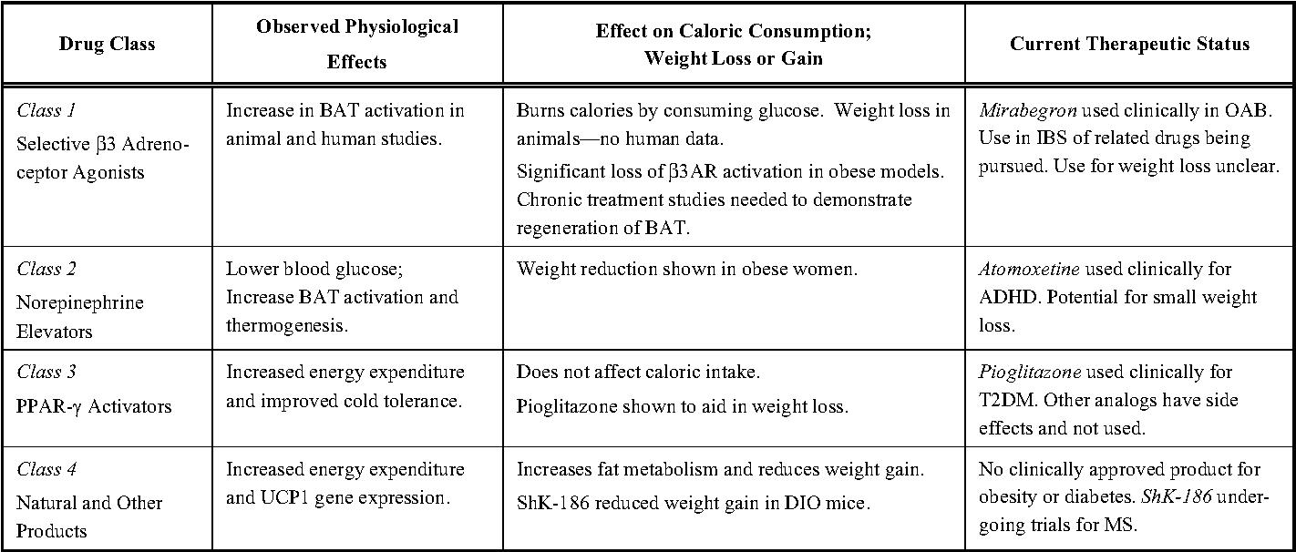 Low gi low carb diet plan