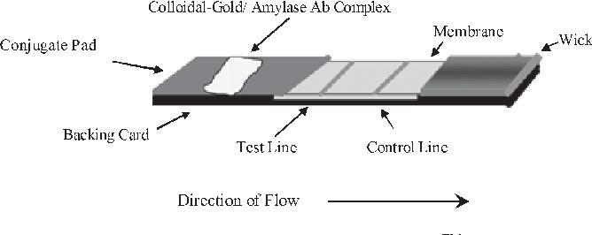 1—schematic diagram of an assembled rsidtm-saliva strip test  the