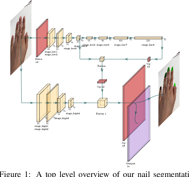 Figure 1 for Nail Polish Try-On: Realtime Semantic Segmentation of Small Objects for Native and Browser Smartphone AR Applications