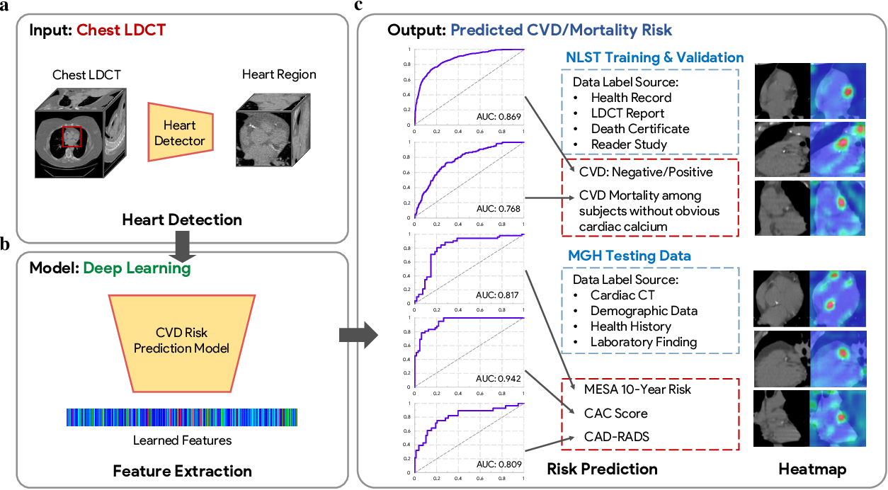 Figure 1 for Deep Learning Predicts Cardiovascular Disease Risks from Lung Cancer Screening Low Dose Computed Tomography