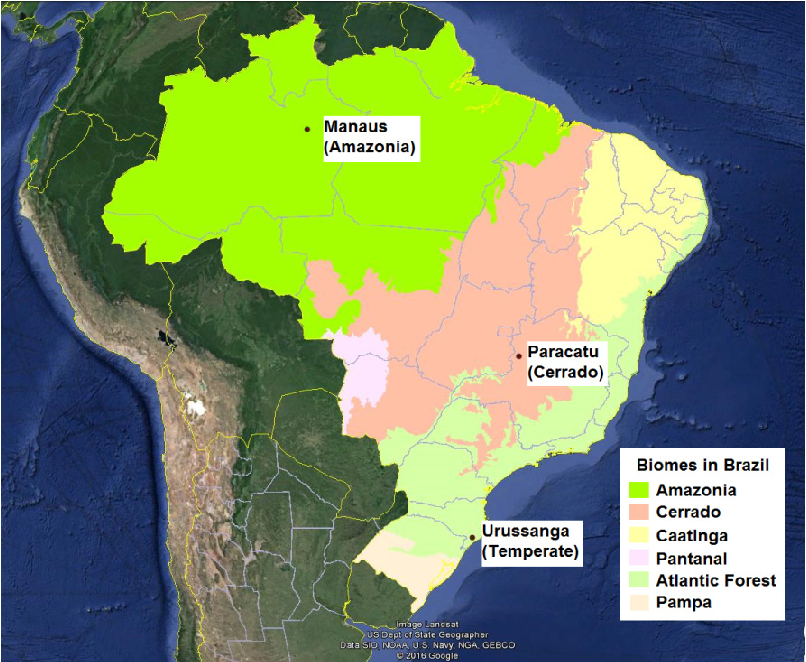 Fig. 1. Location of the three meteorological sites in Brazil (adapted from an image mask from the IBGE site (ftp://geoftp.ibge.gov.br/mapas_interativos/) using Google Earth Software).