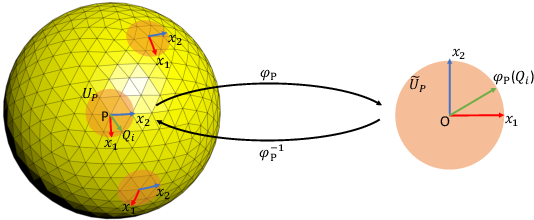 Figure 3 for PDO-e$\text{S}^\text{2}$CNNs: Partial Differential Operator Based Equivariant Spherical CNNs