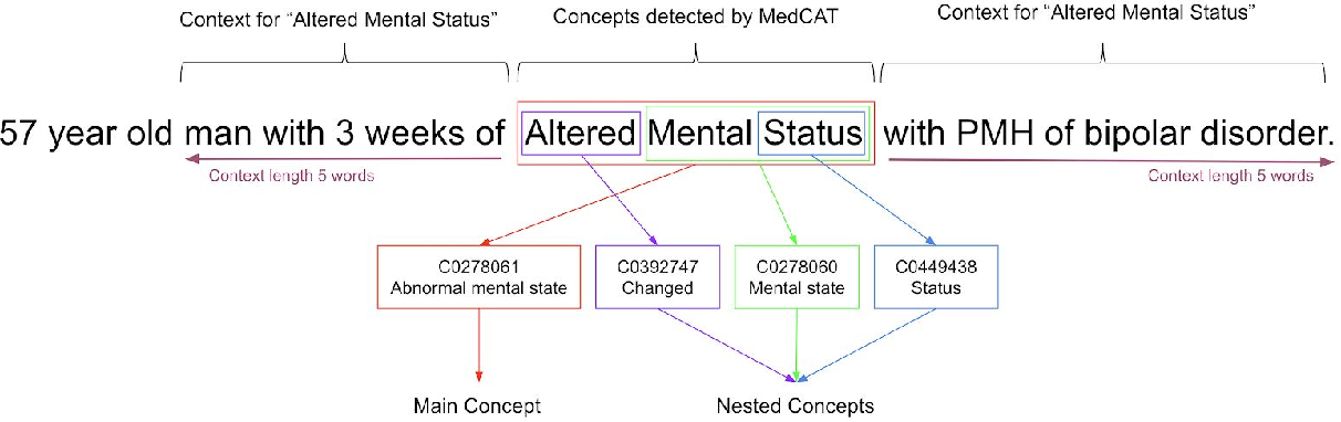 Figure 1 for MedCAT -- Medical Concept Annotation Tool