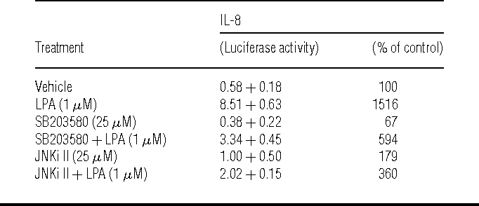 Table 1 Requirement of p38 MAPK and JNK for transcription from the IL-8 promoter