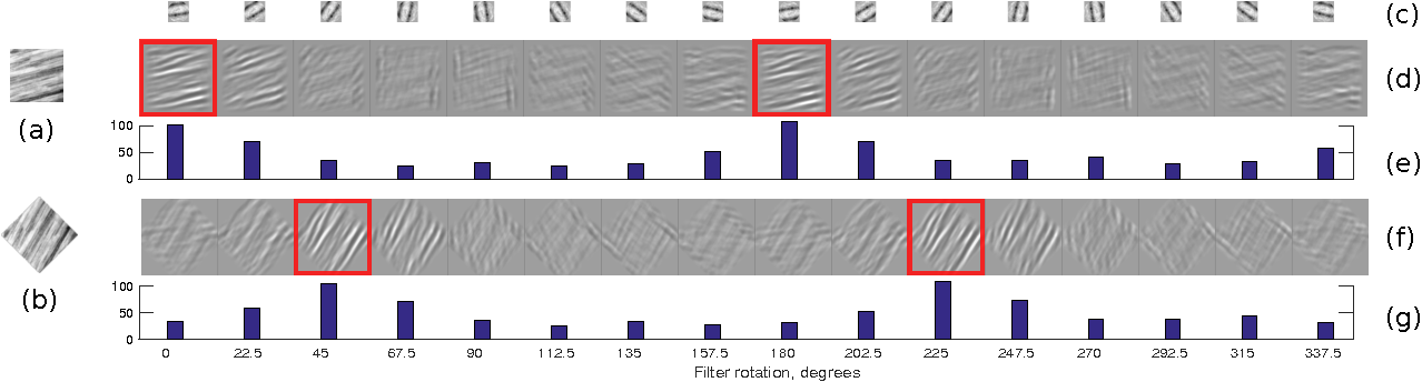 Figure 1 for Learning rotation invariant convolutional filters for texture classification