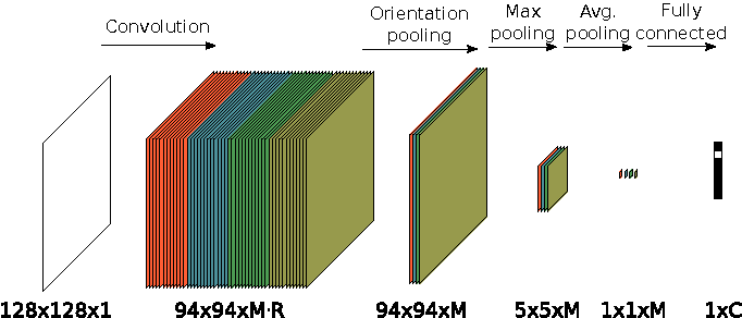 Figure 2 for Learning rotation invariant convolutional filters for texture classification