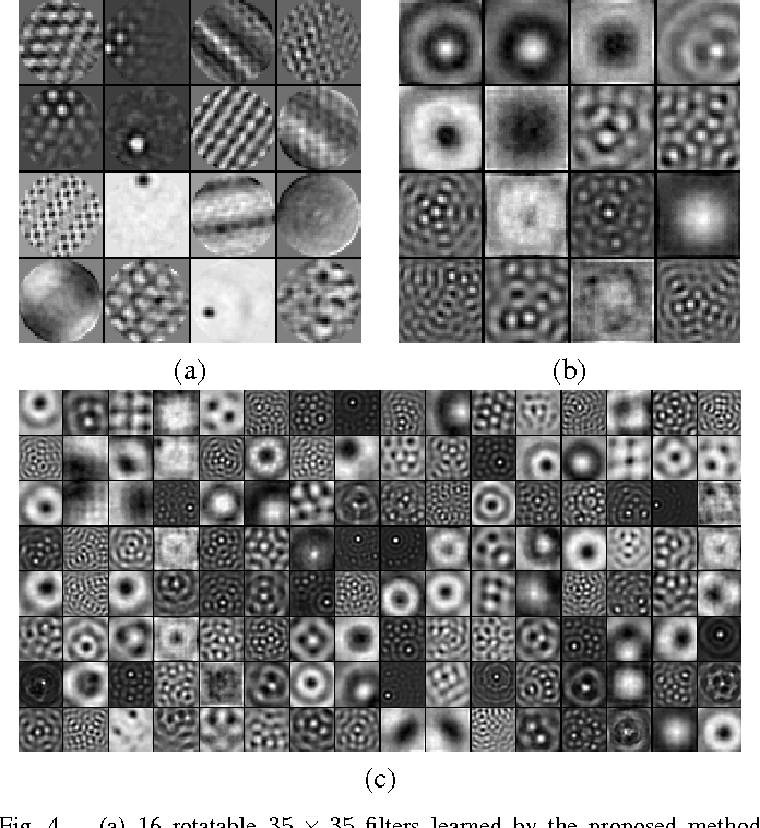 Figure 4 for Learning rotation invariant convolutional filters for texture classification
