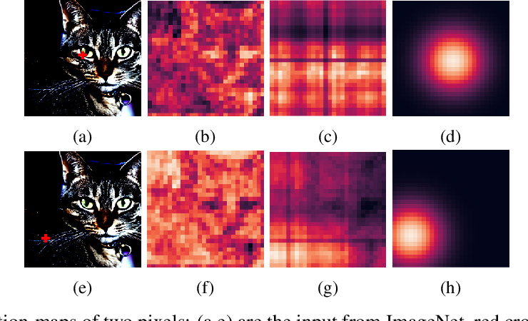 Figure 1 for Explicitly Modeled Attention Maps for Image Classification