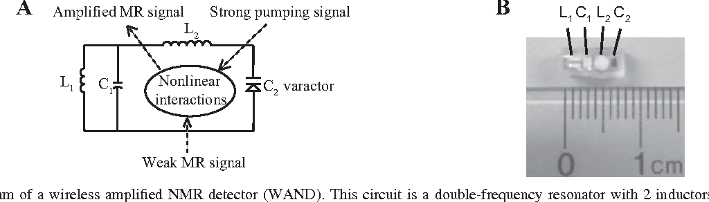 Figure 1 from live nephron imaging by mri semantic scholar a circuit diagram of a wireless amplified nmr detector wand ccuart Images