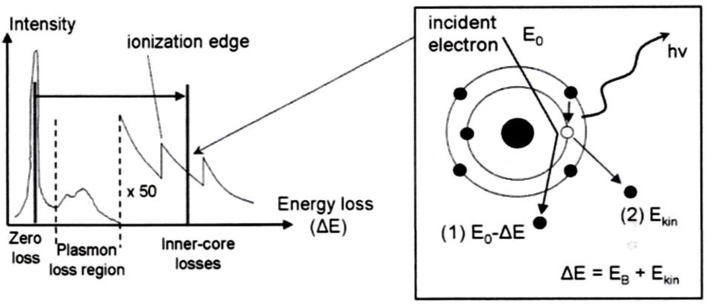 Fig A T Gear Position Indicator Electrical Schematic 2005 Images