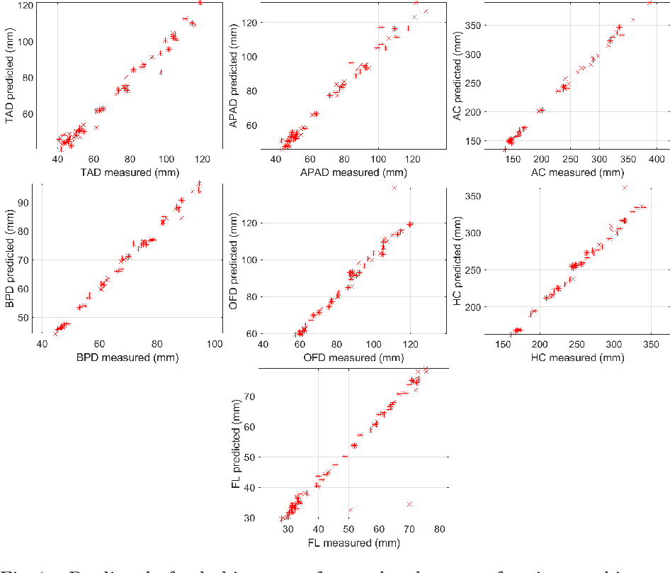 Figure 3 for AutoFB: Automating Fetal Biometry Estimation from Standard Ultrasound Planes