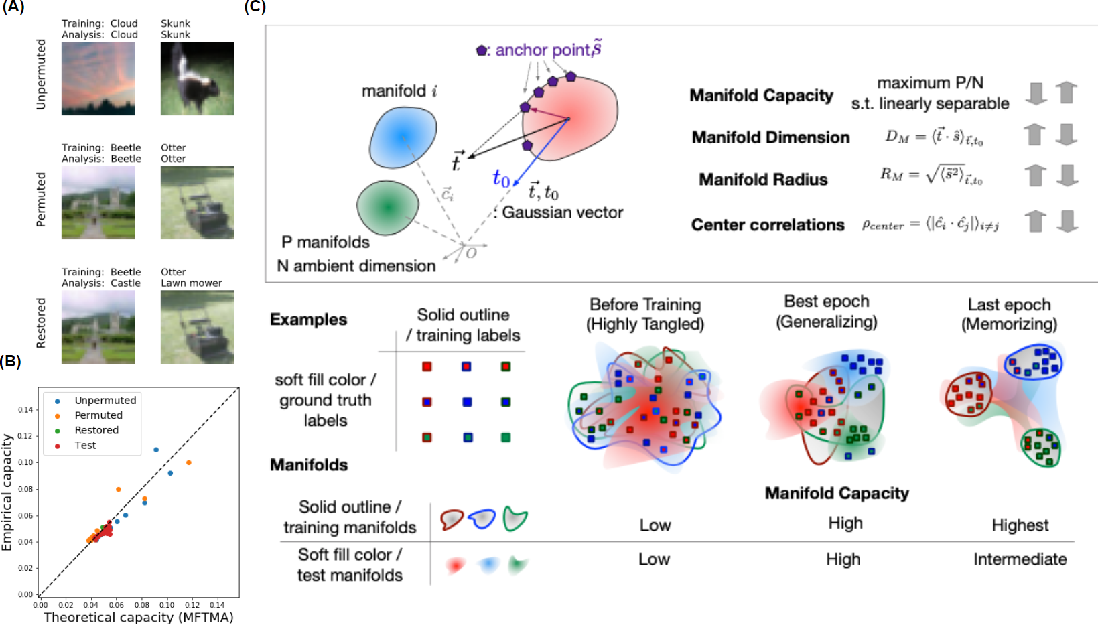 Figure 1 for On the geometry of generalization and memorization in deep neural networks