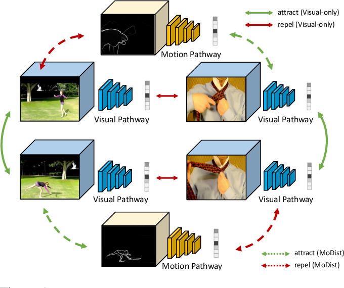 Figure 1 for MoDist: Motion Distillation for Self-supervised Video Representation Learning