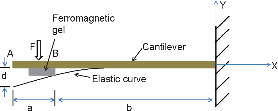 Figure 3.3. Loading of the cantilever due to self weight and magnetic coating.