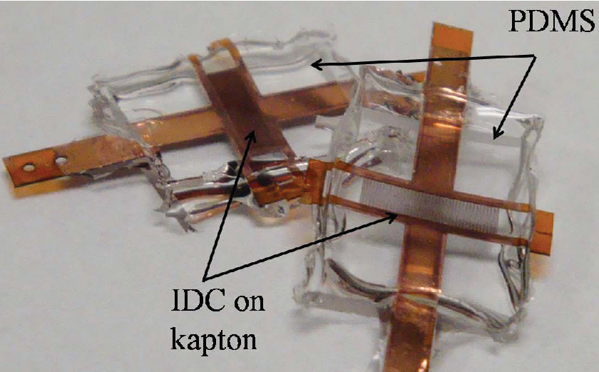 Figure 5.10. Image showing variable IDCs encapsulated in PDMS with 80 fingers (left) and 60 finger (right).