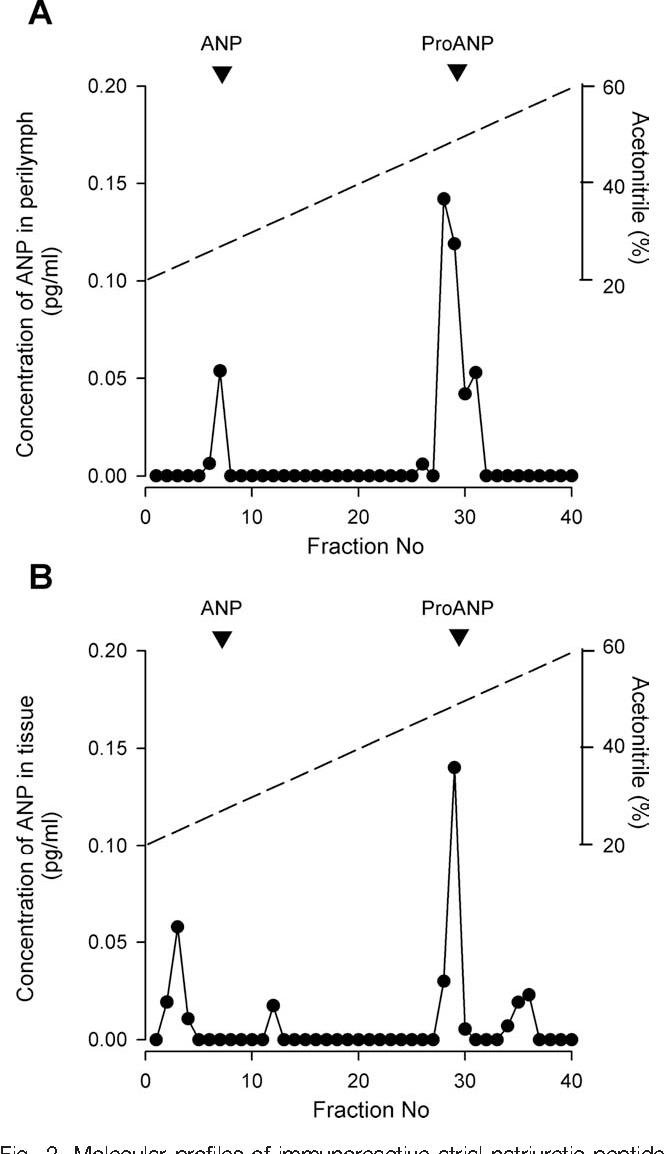 Fig 2 Molecular Profiles Of Immunoreactive Atrial Natriuretic Peptide ANP In