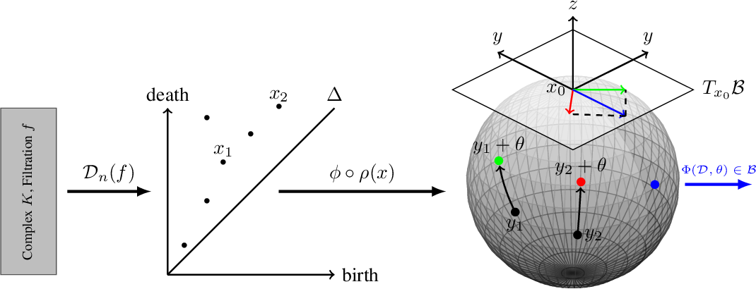 Figure 1 for Learning Hyperbolic Representations of Topological Features