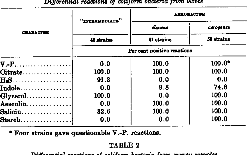 TABLE 1 Differential reactions of coliform bacteria from olives