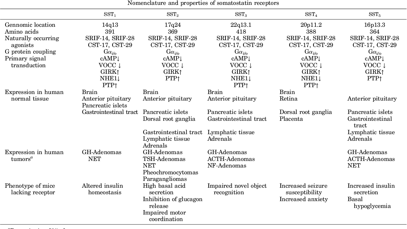 TABLE 1 Nomenclature and properties of somatostatin receptors