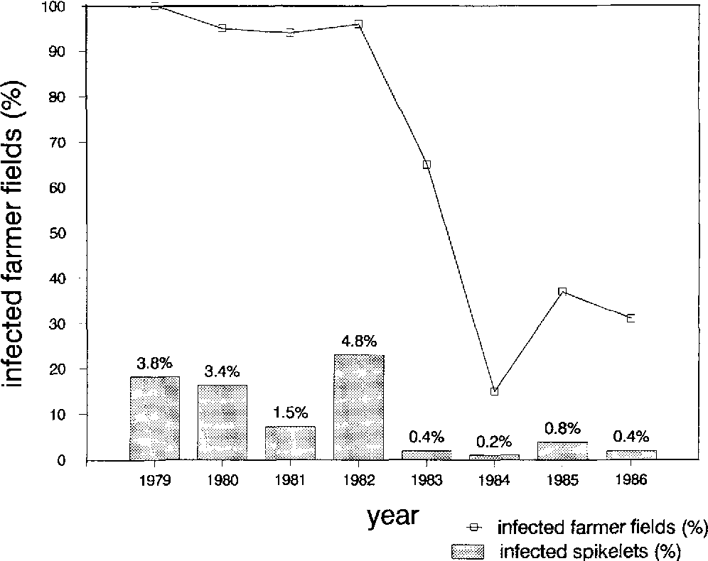 Fig. 1. Fusarium head blight prevalence (percentage infected farmer fields) and percentage infected spikelets of affected fields in the Netherlands for the years 1979-1986. Source: EPIPRE (Anon., 1985b; 1987b; Daamen et al., 1990)