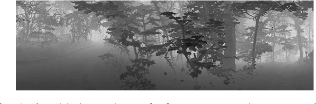 Fig. 13. The original range image of a forest scene. Intensity represents depth values, with distant object looking brighter.