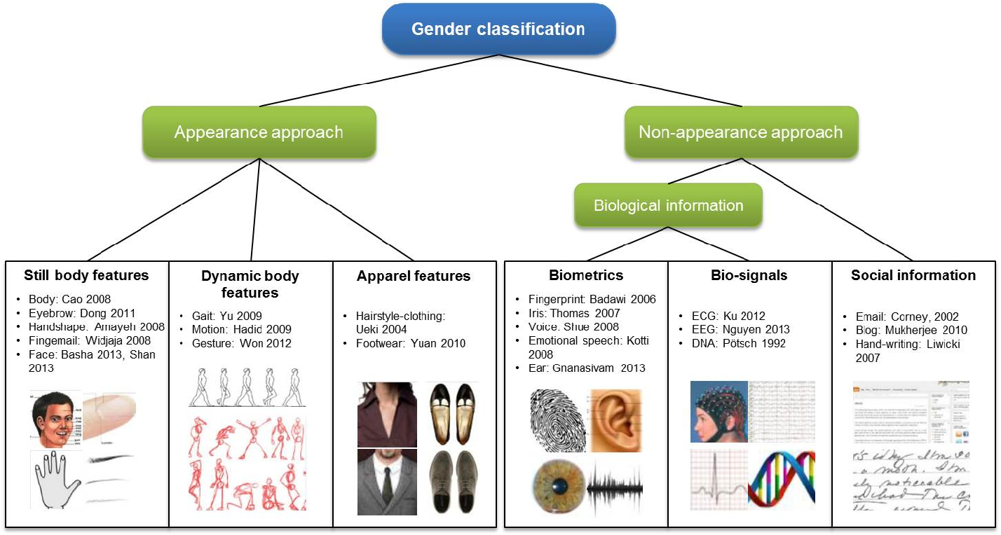 Figure 2 for Human Gender Classification: A Review