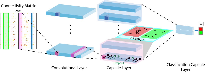Figure 1 for Multi-Kernel Capsule Network for Schizophrenia Identification