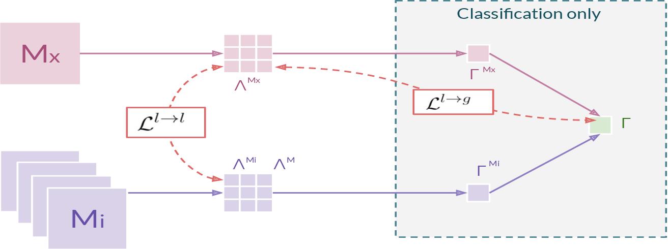Figure 1 for Cross-Modal Information Maximization for Medical Imaging: CMIM