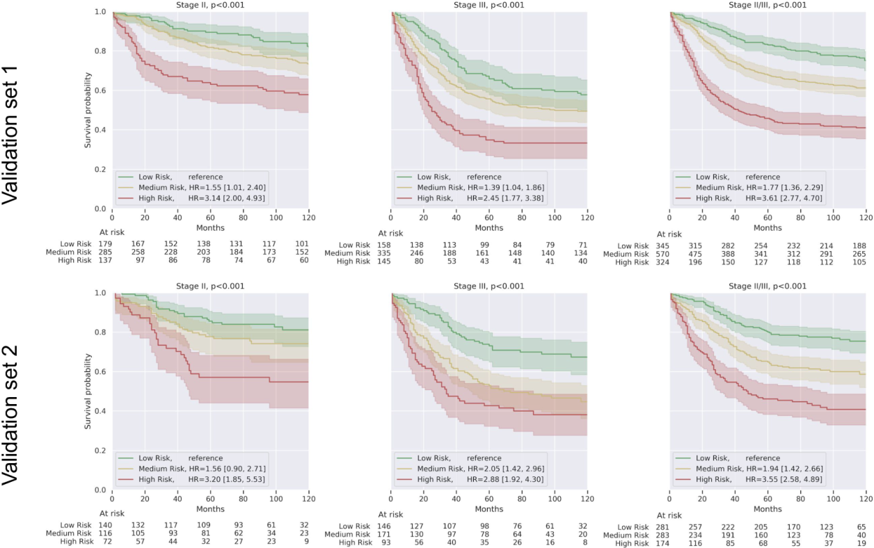 Figure 1 for Interpretable Survival Prediction for Colorectal Cancer using Deep Learning
