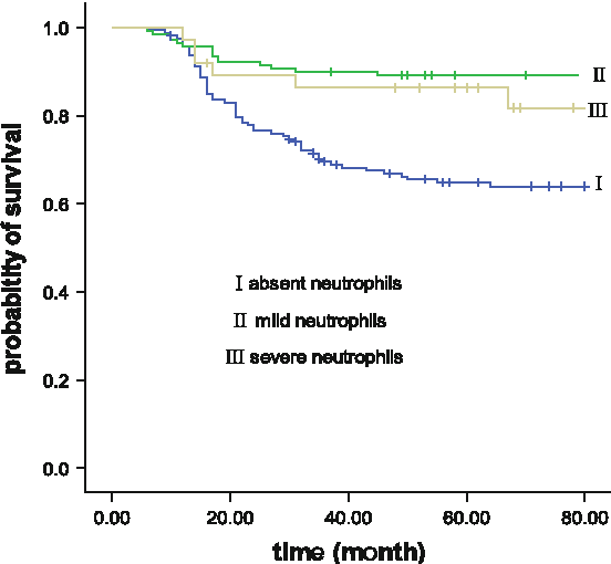 Fig. 3 Kaplan–Meier survival curves according to the three groups of worst grade neutropenia that occurred during six cycles of CEF