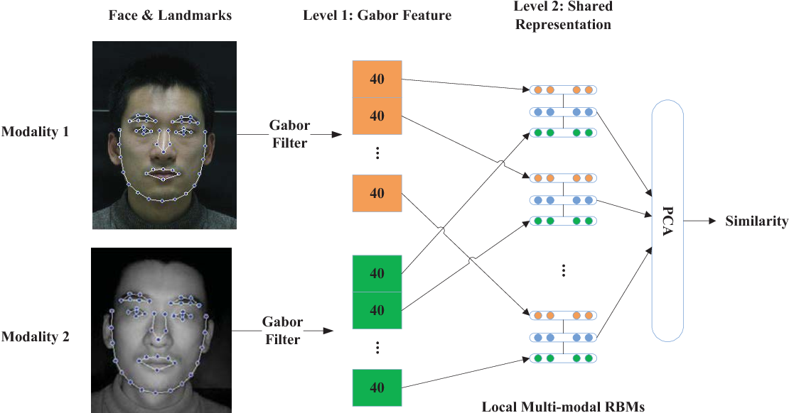 Figure 2 for Shared Representation Learning for Heterogeneous Face Recognition
