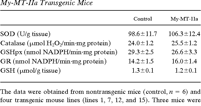 Table I. Enzyme Activities of SOD, GSHpx, GR, and Catalase, and Concentration of GSH in the Hearts of Control and My-MT-IIa Transgenic Mice