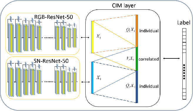 Figure 1 for Correlated and Individual Multi-Modal Deep Learning for RGB-D Object Recognition