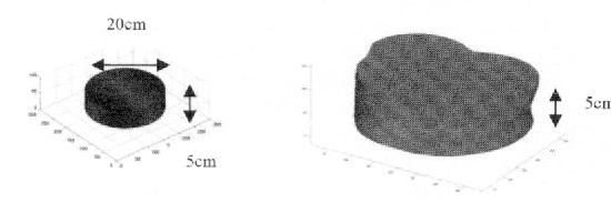 Fig 1: CylindricalModel Fig 2: Hum.n Morphology model