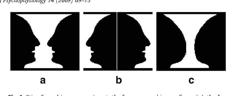 The Vase Face Illusion Seen By The Brain An Event Related Brain