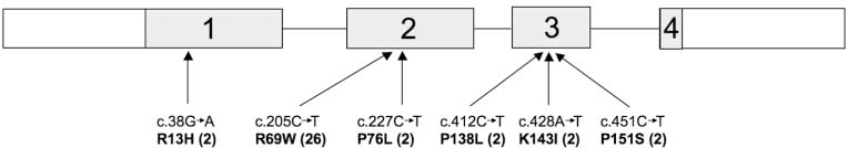 Figure 4. Schematic representation of the RNASEH2C gene, with the position of identified mutations. Shaded areas with large numbers indicate the specified exons. Numbers in parentheses after mutations represent the number of mutated alleles identified.