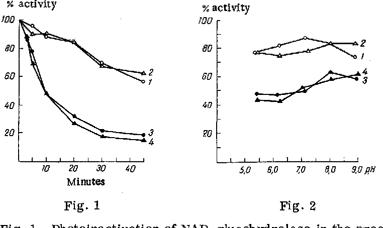 Figure 1 from photoinactivation of nad glucohydrolase from rabbit fig 1 fhotoinact iva t ion of nad glucohydrolase in the p r e s ccuart Images