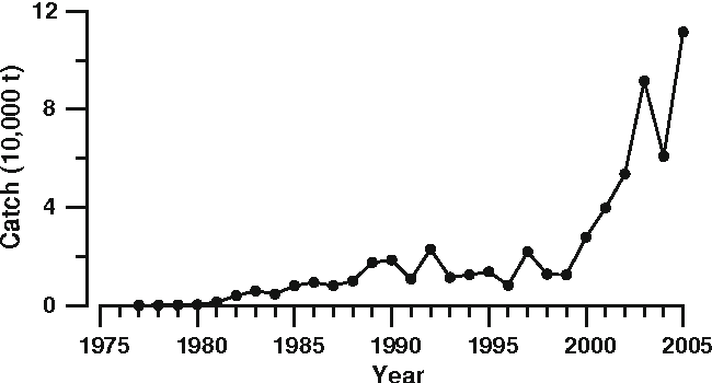 Fig. 2 Annual catches of Pacific saury in the northwestern Pacific during 1977–2005 from the Taiwanese Pacific saury fishery