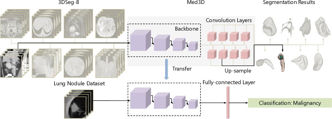 Figure 3 for Med3D: Transfer Learning for 3D Medical Image Analysis