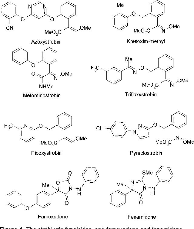 Figure 1 from The strobilurin fungicides  - Semantic Scholar