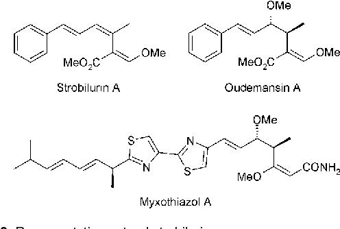 Figure 2 from The strobilurin fungicides  - Semantic Scholar
