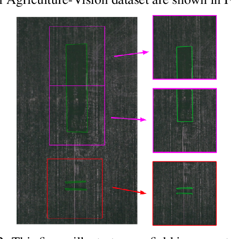 Figure 4 for Agriculture-Vision: A Large Aerial Image Database for Agricultural Pattern Analysis