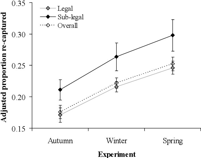 Figure 6-8: Adjusted mean percentage (± standard error) of recaptured legal and sub-legal A. balloti tagged-and-released during each experiment (all treatments combined). Average days-at-liberty for the Autumn07, Winter07 and Spring07 experiments were 236, 133 and 45, respectively.