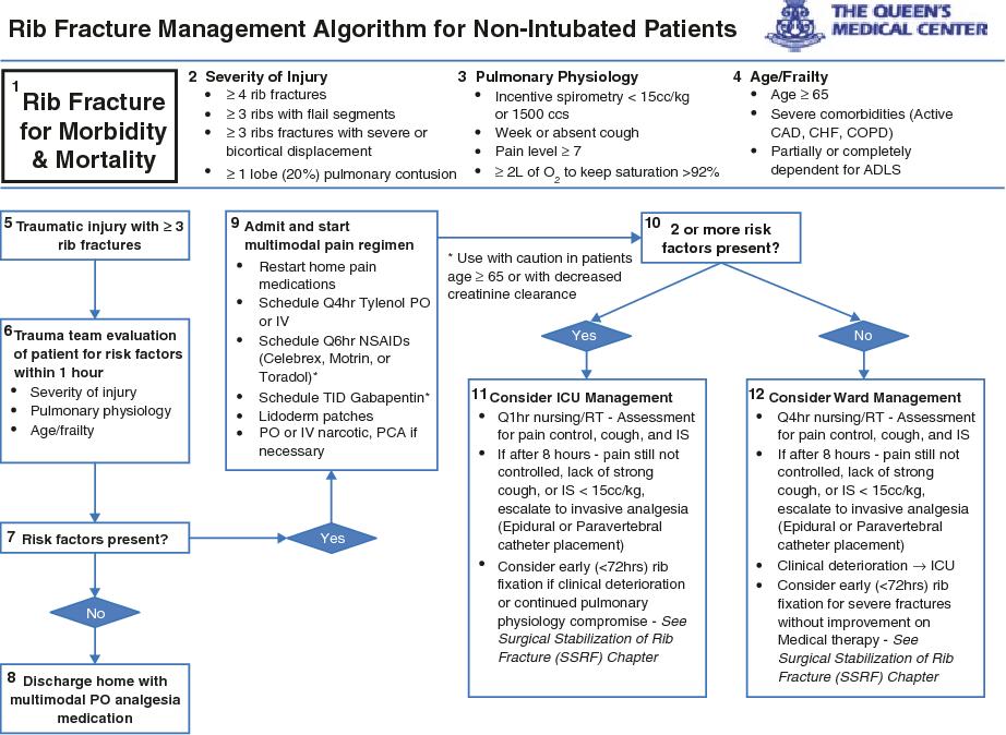 Figure 10 1 from Rib Fracture Management - Semantic Scholar