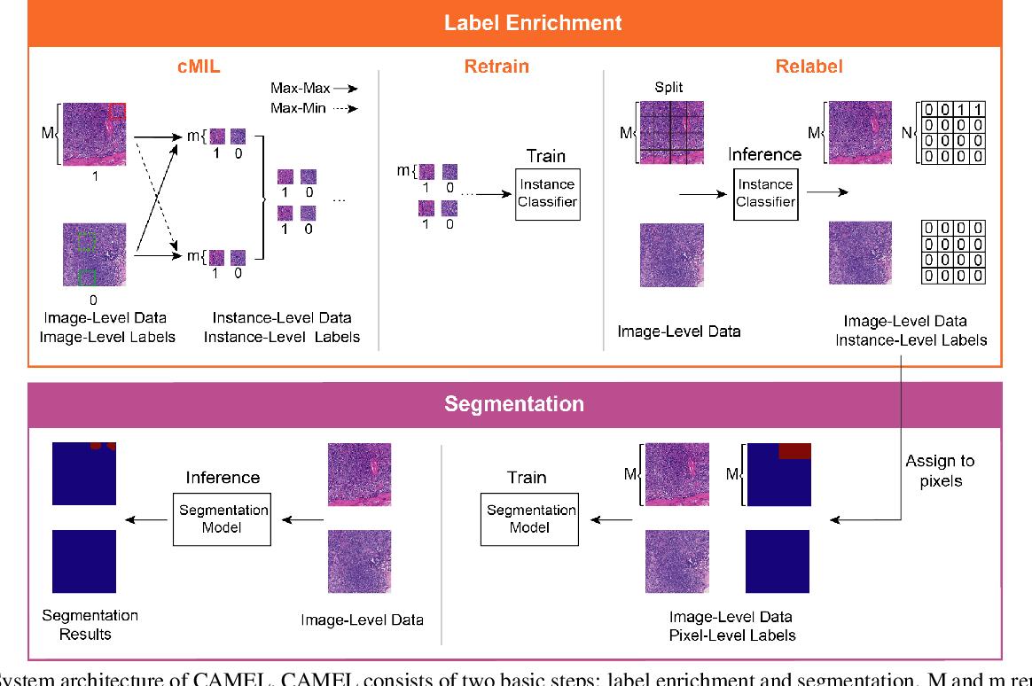 Figure 1 for CAMEL: A Weakly Supervised Learning Framework for Histopathology Image Segmentation