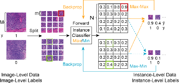 Figure 3 for CAMEL: A Weakly Supervised Learning Framework for Histopathology Image Segmentation