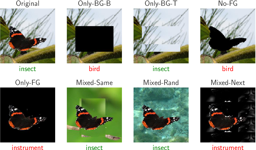Figure 1 for Noise or Signal: The Role of Image Backgrounds in Object Recognition