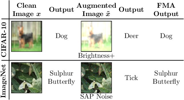 Figure 1 for A Self-Supervised Feature Map Augmentation (FMA) Loss and Combined Augmentations Finetuning to Efficiently Improve the Robustness of CNNs