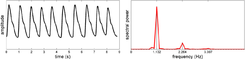 Figure 2 for A spectral-spatial fusion model for robust blood pulse waveform extraction in photoplethysmographic imaging