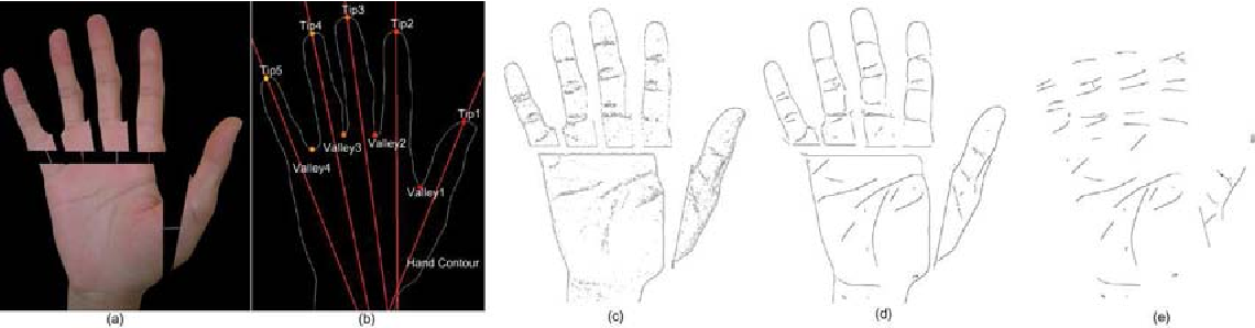Figure 4 from Human hand modeling from surface anatomy - Semantic ...